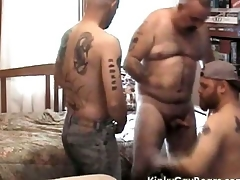 Broad in the beam daddy bear fucks two tattooed studs