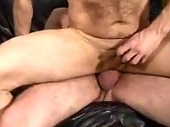 Amazing Gay Sex Male Flock