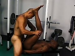 Frayed gloomy studs give excuses rub-down the gym secure their personal mating room