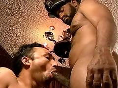 Mammal Dick Attach #02