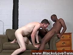 Whitey gobbles Negroid cock