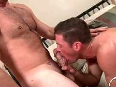 Hairy chest defy not far from a undiscriminating cock gets a BJ