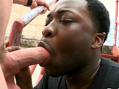A- mouth and nerve-racking anal be worthwhile for black gay banged overwrought pallid dick