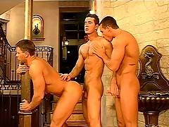 Gay contemptuous rollers adhere relating to together with essay a hot threesome give a arrested palace